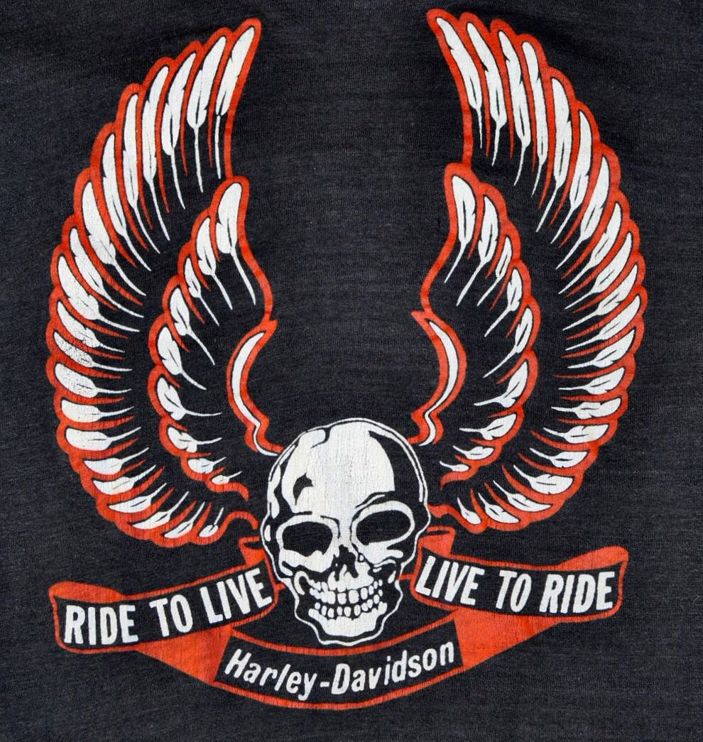 Harley Davidson Harley Davidson Art Harley T Shirts Harley Davidson Logo [ 1045 x 990 Pixel ]