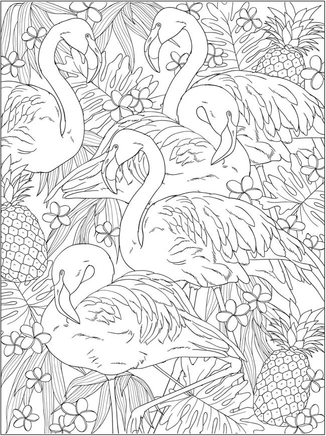 Welcome To Dover Publications Bird Coloring Pages Flamingo Coloring Page Animal Coloring Pages