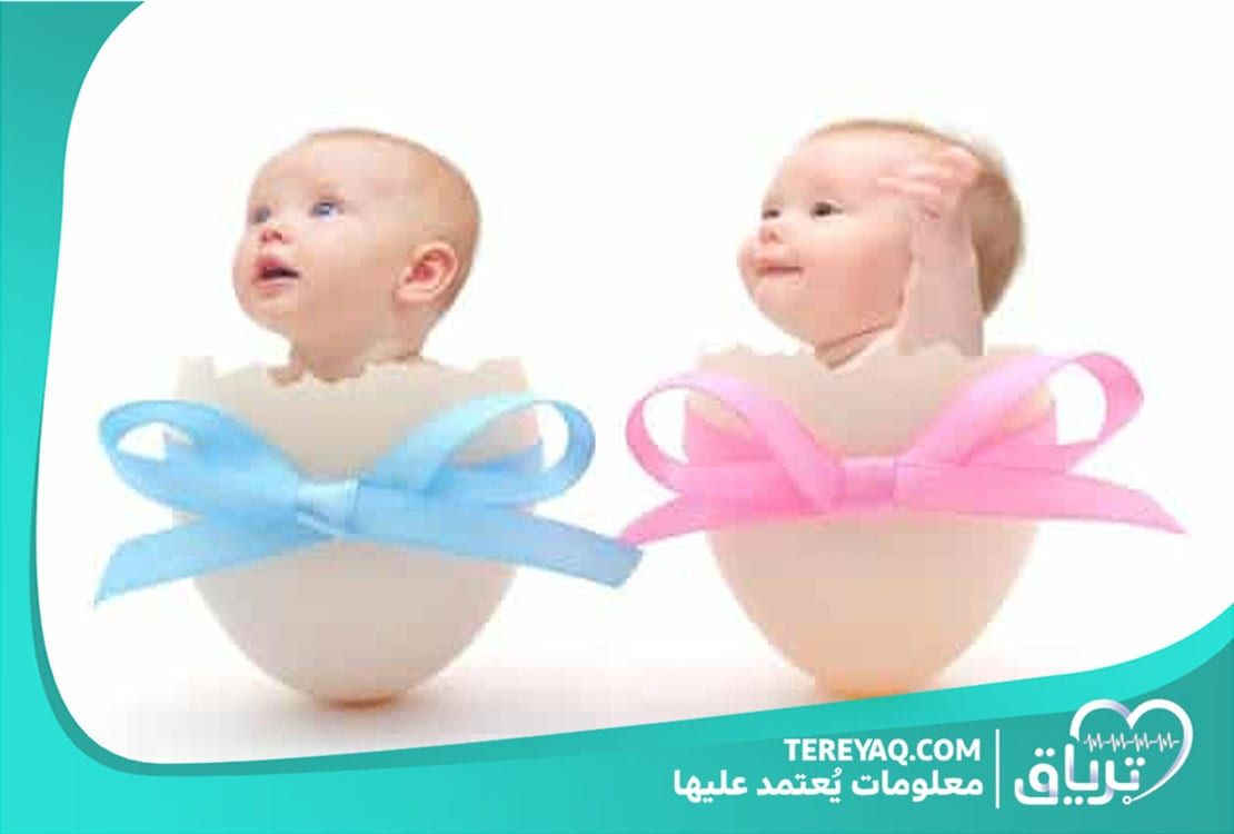 معرفة نوع الجنين من الشهر الأول بالملح Baby Gender Prediction Boy Or Girl Quiz Free Baby Stuff