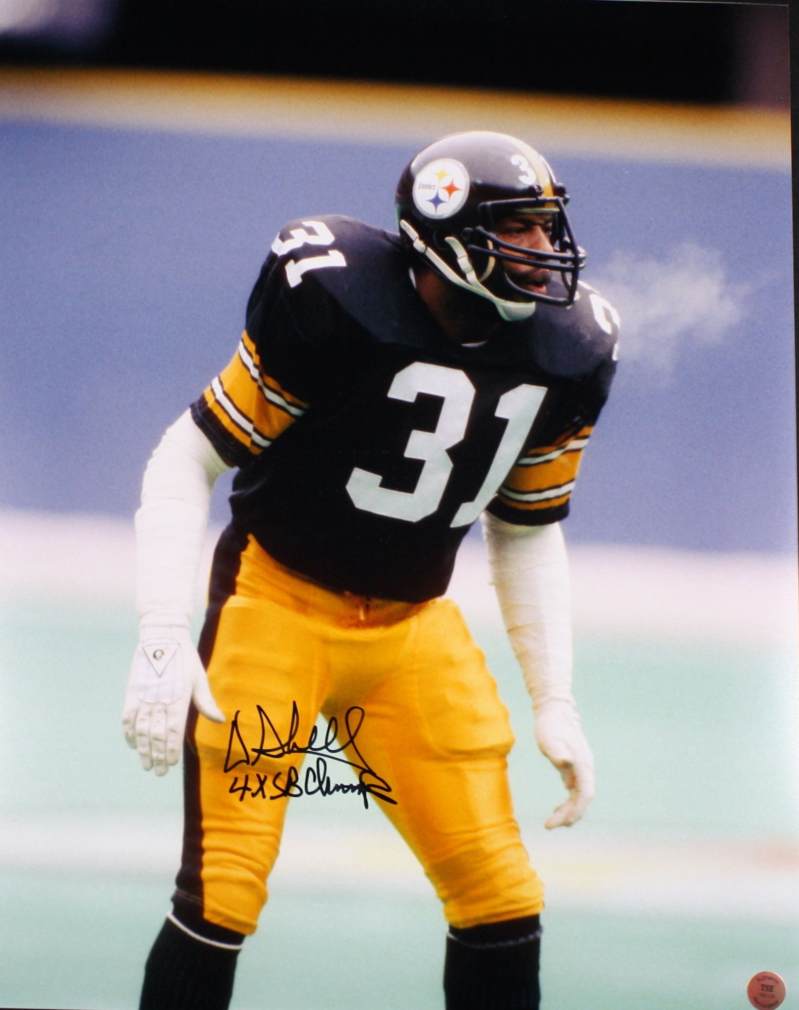 7f458ace975 Donnie Shell  steelers  31 Pittsburgh Steelers Football