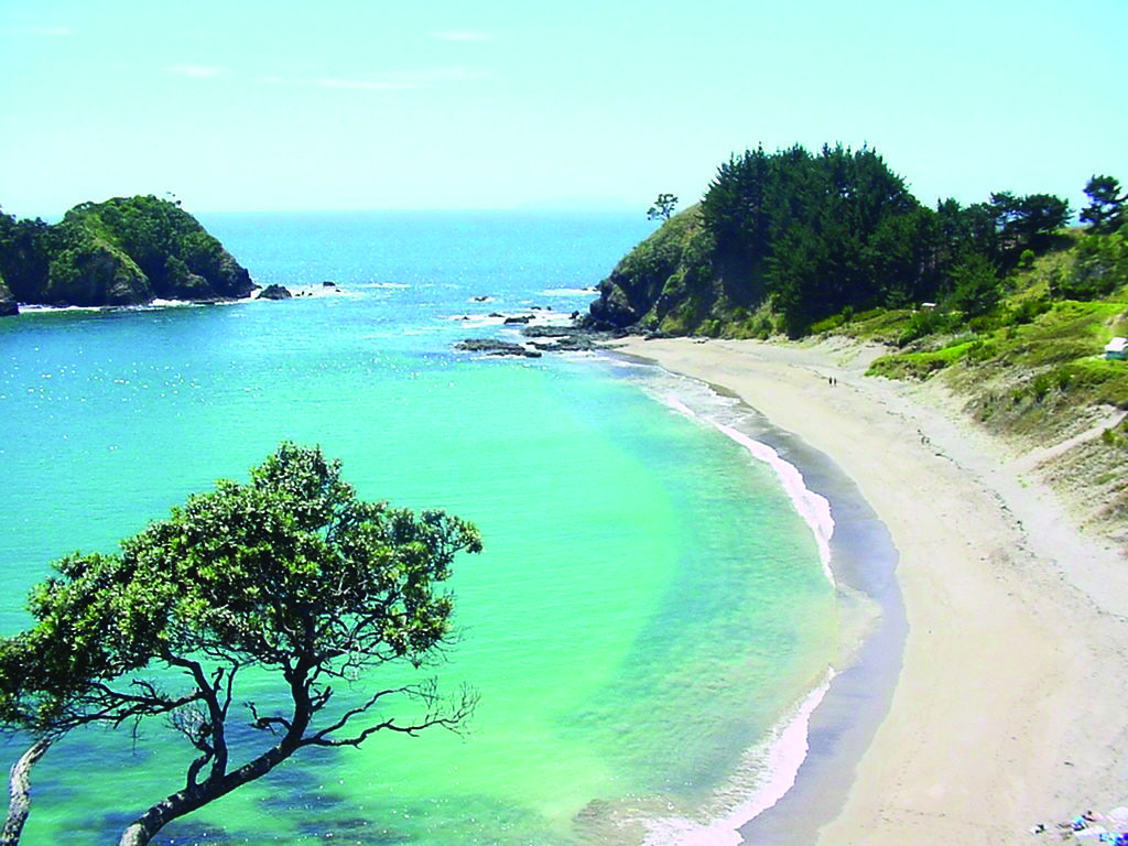 Otamure Bay | Camping destinations, Places to go, Camping ...