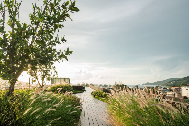 The Deck Phuket by Sansiri. Architect  Somdoon Architects (SdA)  Landscape Architect  Shma #zengarden #zen #garden #rooftop