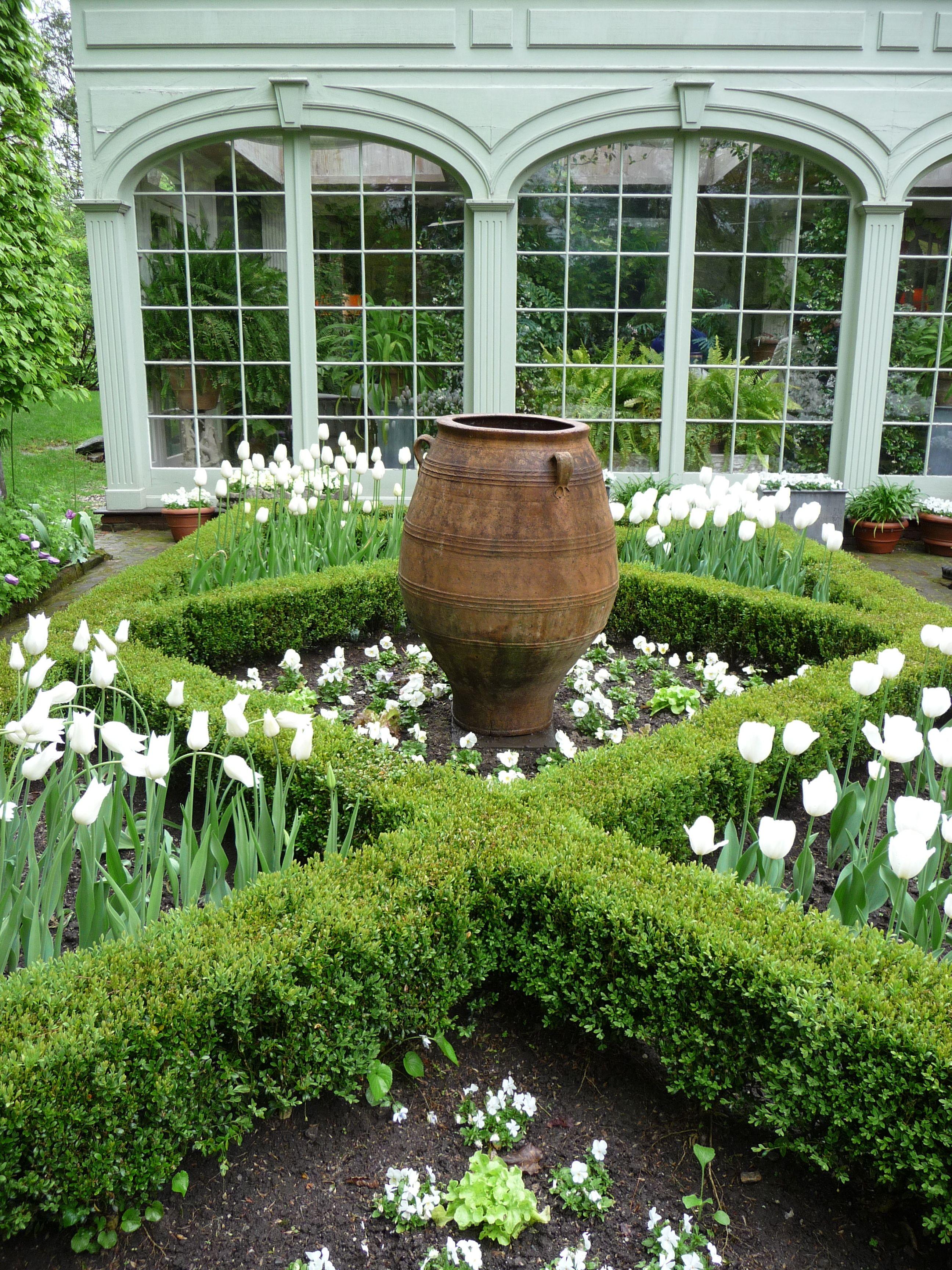 In The Garden With Bunny Boxwood Garden Garden