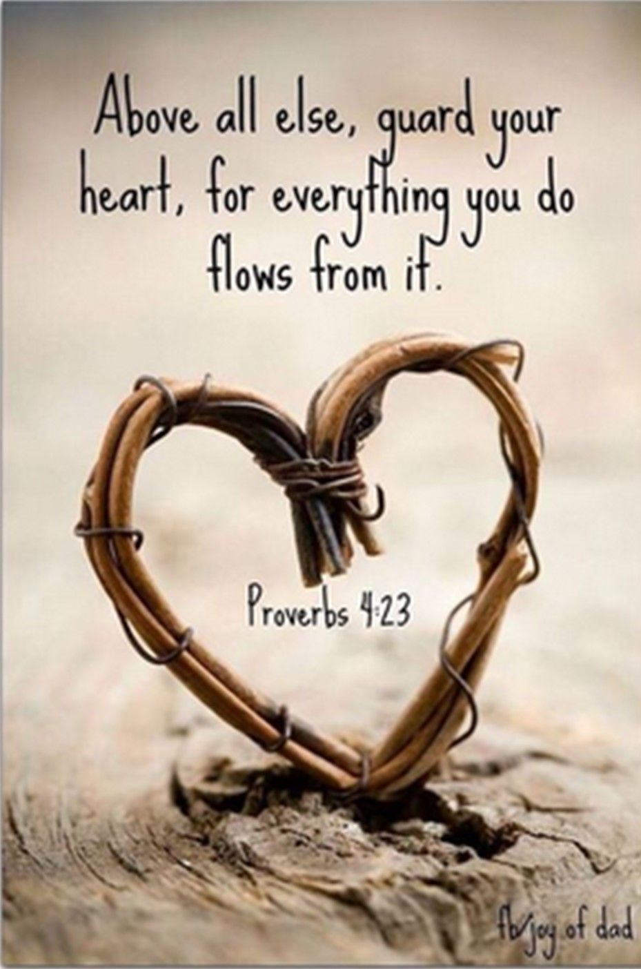 proverbs love quotes bible