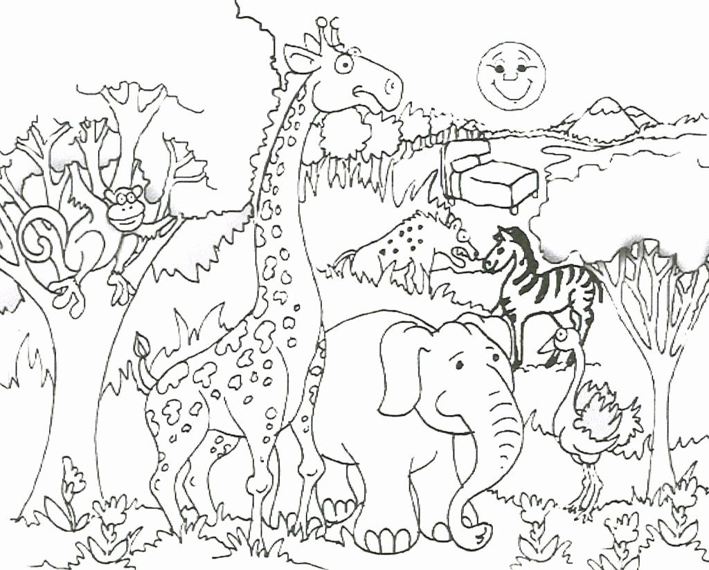 Rainforest Animal Coloring Pages Lovely Coloring Page Land Animalsing Pages Colouring And Zoo Animal Coloring Pages Monkey Coloring Pages Animal Coloring Books