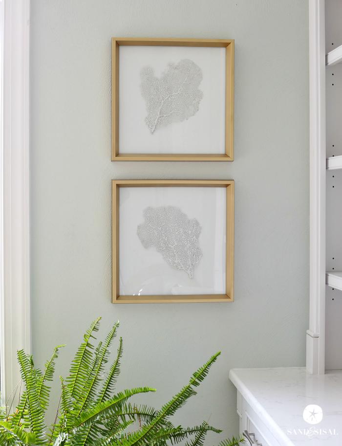 DIY Framed Sea Fans - Adding Coastal Glam to Any Room | Diy frame ...