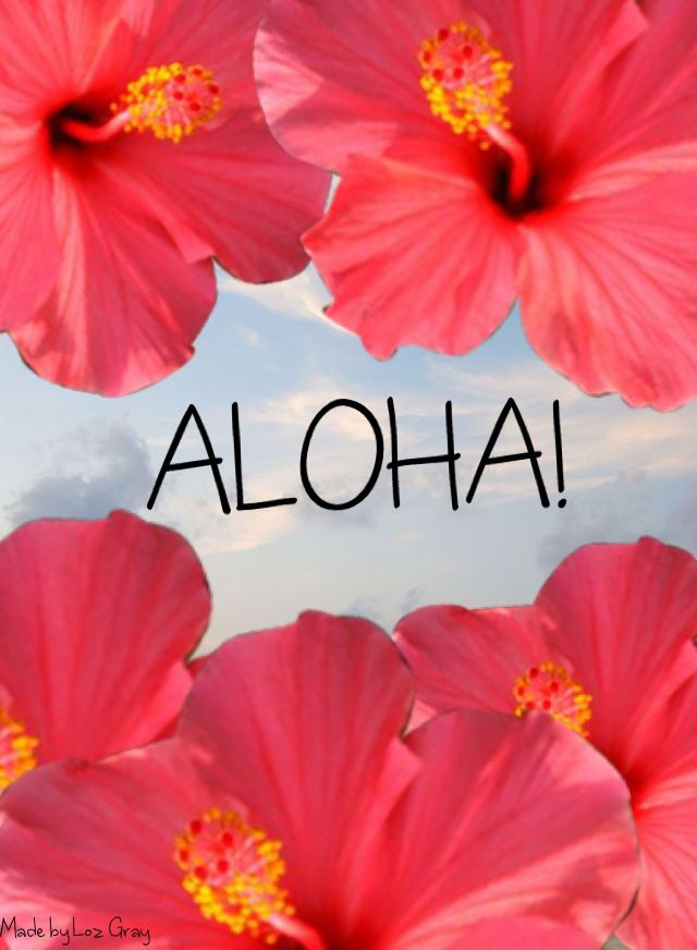Tropical Floral Wallpaper Backgrounds