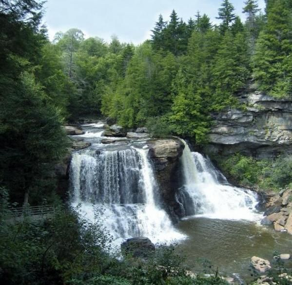 Blackwater Falls State Park Is Named For The Falls Of The Blackwater River Whose Amber Colored Waters Pl Blackwater Falls State Park Places To See Places To Go