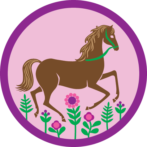 Badges For Girl Scouts