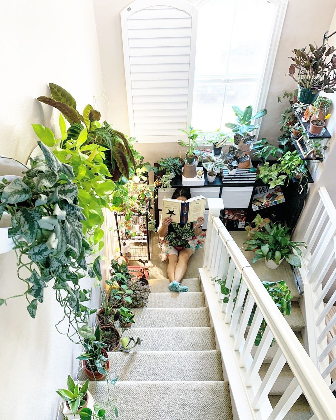 21 Houseplant Decor Ideas That Will Make Your Home 200 Prettier Plants House Plants Plant Stand Indoor
