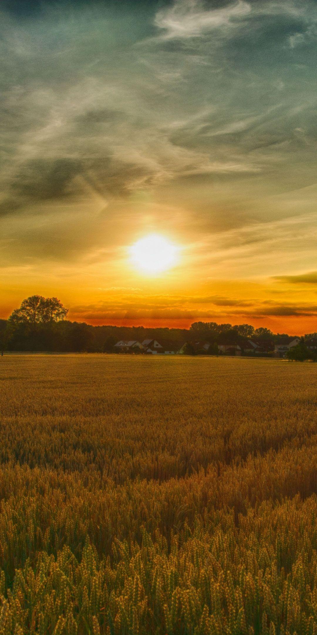 Summer Sunset Farm Landscape Nature 1080x2160 Wallpaper Farm Scenery Landscape Photography Landscape Pictures