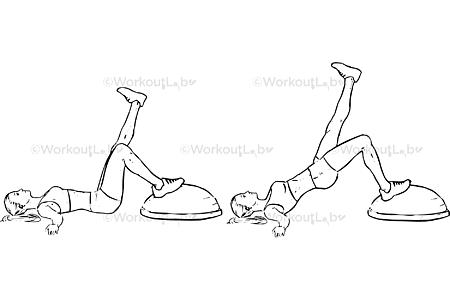 Bosu Ball Single Leg Bridge / Hip Thrusts / Extensions