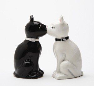 Feline Spicey Black & White Cats Salt & Pepper Shaker Set is sure to be a hit with animal lovers, cat people, and anyone who collects novelty salt & pepper shakers. A hidden magnet keeps these kissing kitties together.