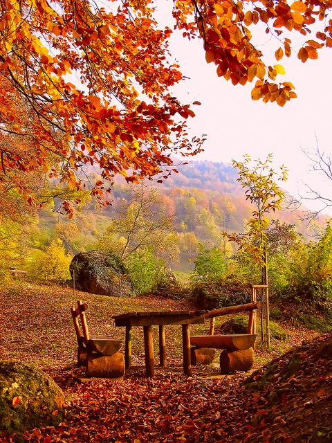 """""""A place to sit down for a short time."""" -- [A place above a village in *Greppen, Lucerne, Switzerland*]~[Photo by hipea (Peter Tootill) - September 16 2012 - Greppen, Canton of Lucerne, Switzerland]'h4d'121015"""