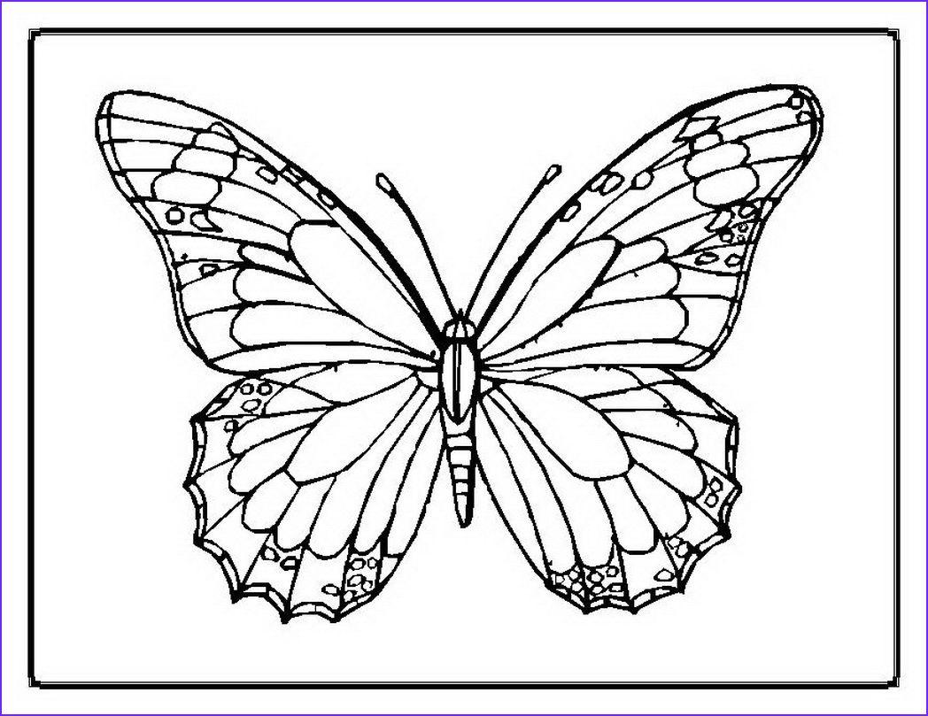 Gallery 10 Best Of Dltk Coloring Pages Gallery   Diseños de mariposas ... is free HD wallpaper.