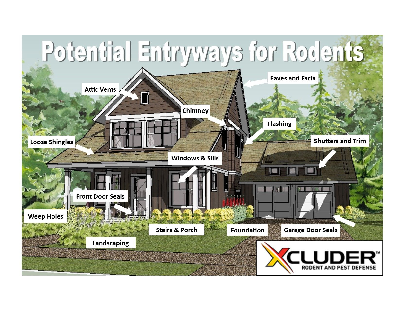 Here is a great list of potential entryways for rodents