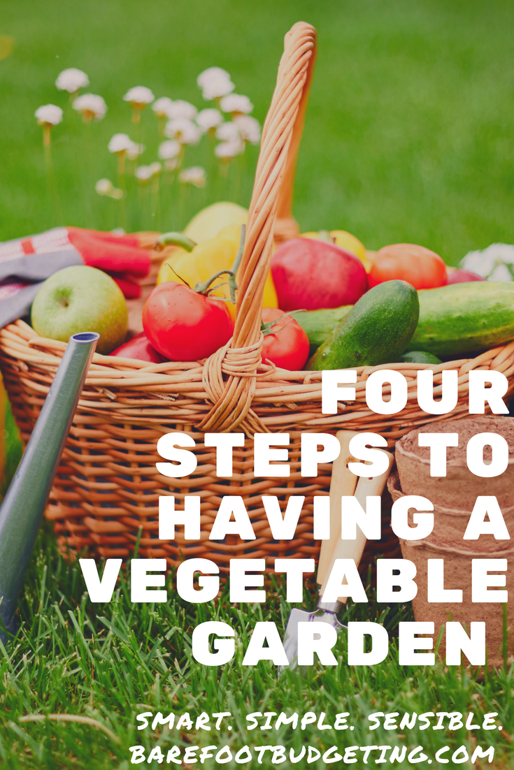 Learn to Start Your Vegetable Garden in Four Easy to Follow Steps  is part of Vegetable garden Kids - vegetable garden is one of the most rewarding things you can do  When you grow your own garden      harvest fresh seasonal fruits, veggies and herbs for less