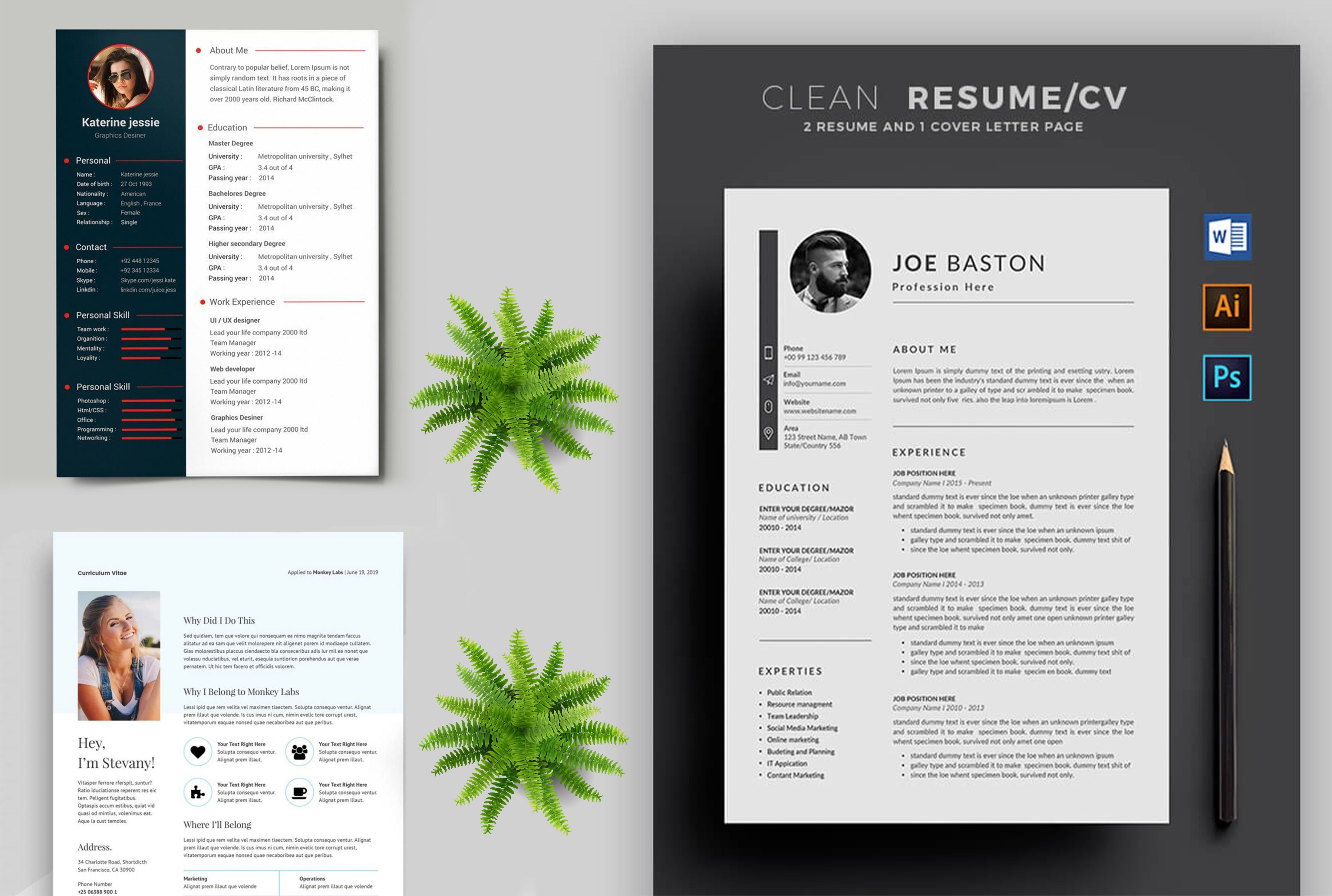 Curriculum Vitae Design Professional Resume Resume Design Creative Graphic Design Resume Resume Design Professional