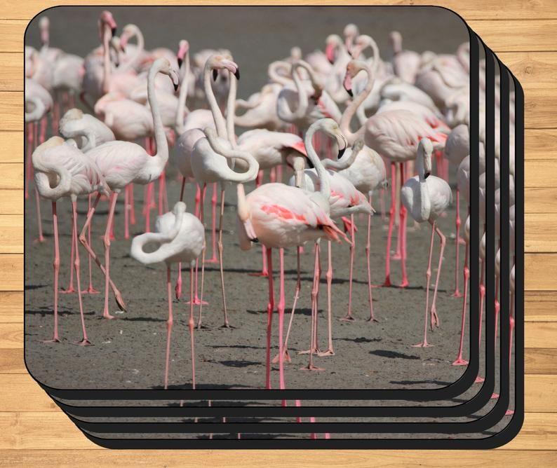 Flamingo Photo Placemats Featuring Original Photo Of A Flock Etsy Flamingo Photo Photo Placemats Flamingo