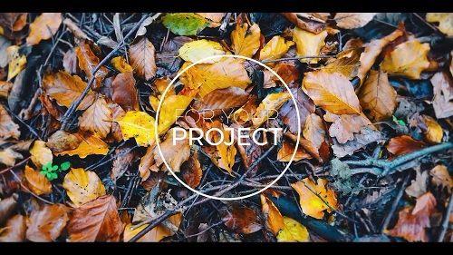 تحميل Polaroid Slideshow 51799 After Effects Templates all down - polaroid template