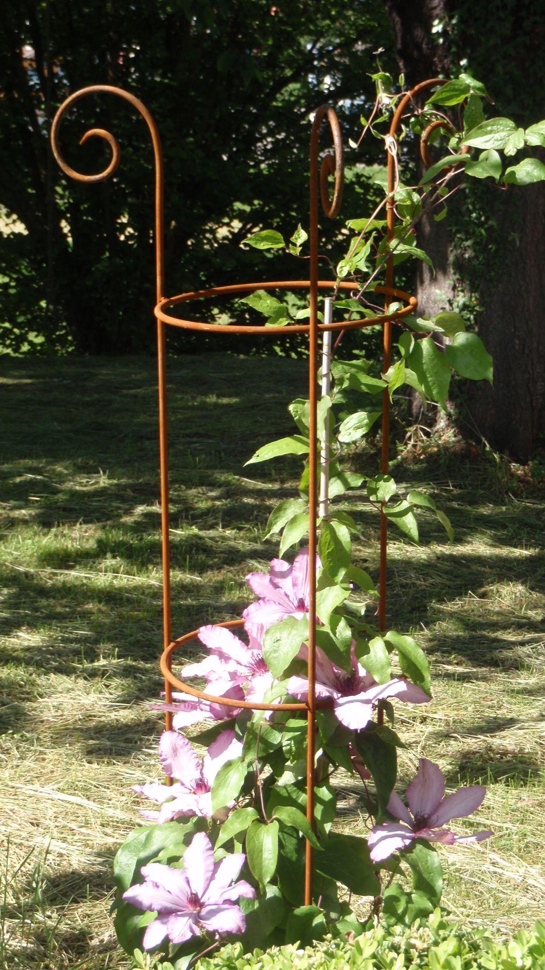 kletterhilfe für rosen und klematis | garden | pinterest | clematis