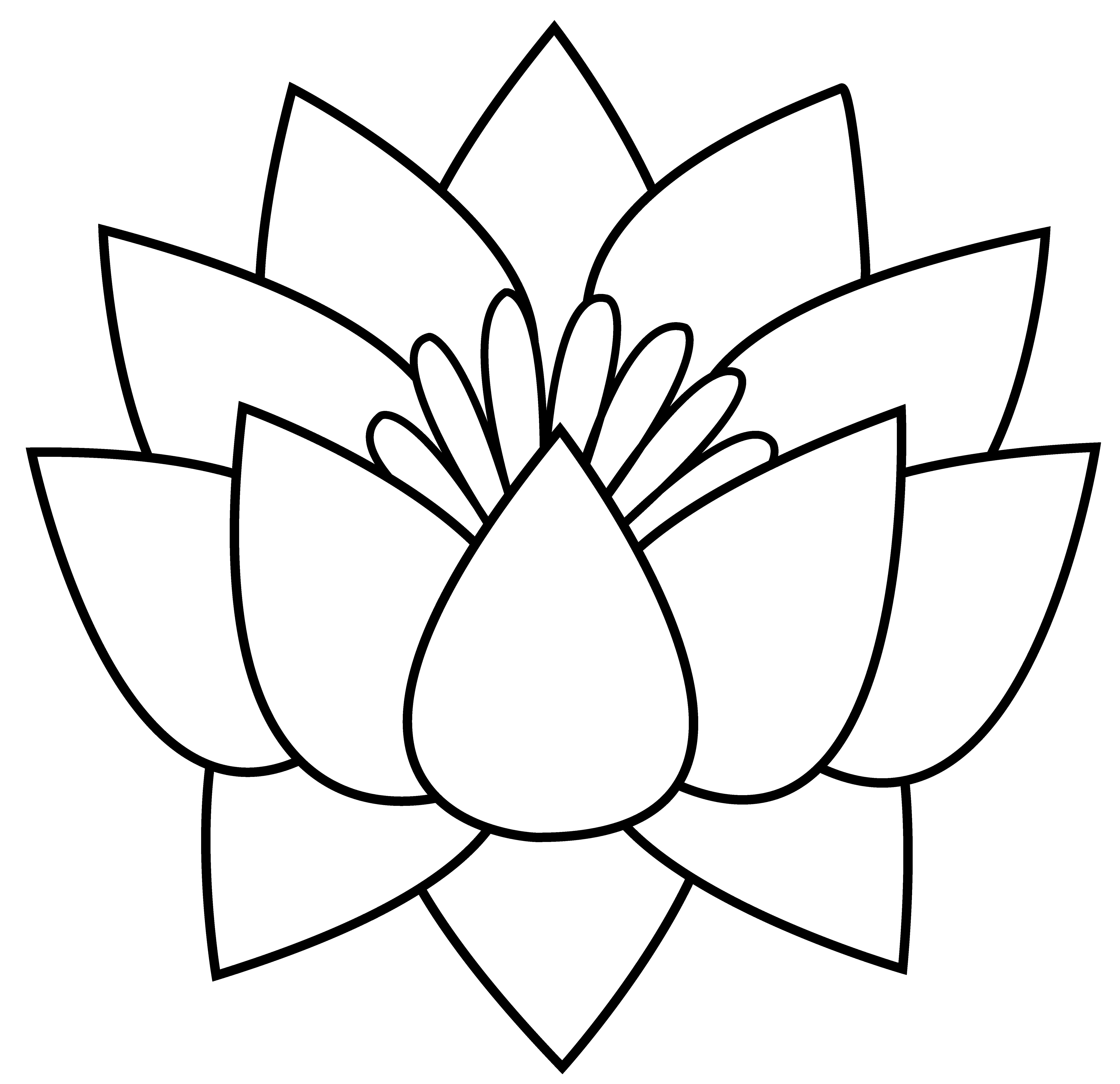 lotus_flower_lineart.png (5953×5764) Lotus flower