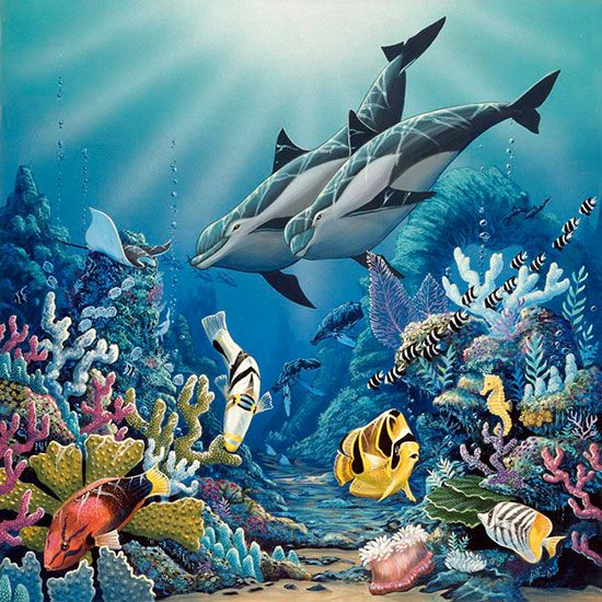 Illumination via muralsyourway dekopaj resmler pinterest a pair of dolphins seem to be enjoying a lovely coral reef in this wall mural by the artist apollo besides a variety of unique coral formations publicscrutiny Images