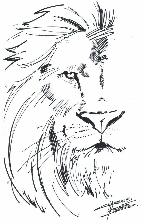 Aslan :)  I can only dream of getting this good.
