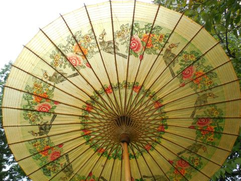 Asian Paper Umbrella 24