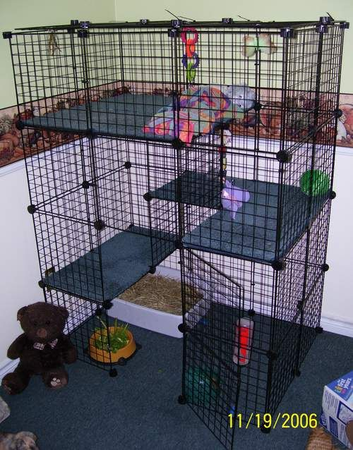 Making a cage with coroplast some examples of neat idea cube cages that you can make - How to make a rabbit cage ...