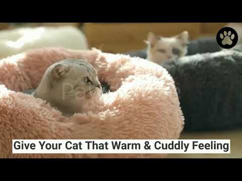 Marshmallow Cat Bed [HOT Selling Interactive cat toys