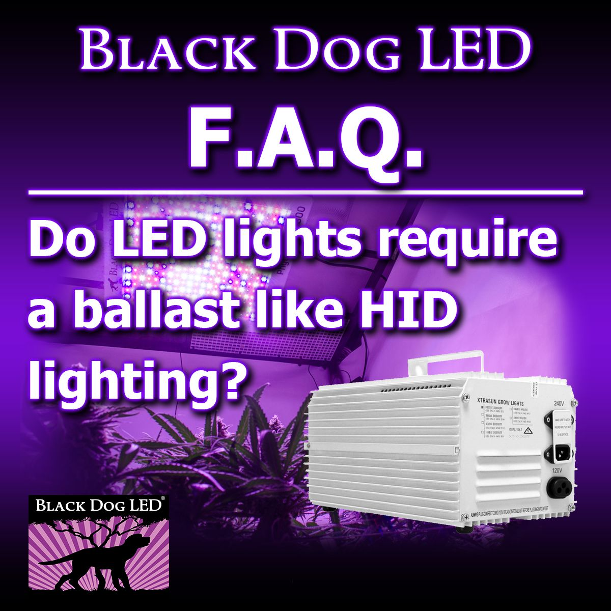No Leds Don T Require A Ballast Hid Lights Require A Ballast In Order To Generate The Extremely High Voltage Required To Initiate Led Grow Lights Lights Led