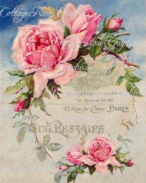 Große digitale Paris Eintagsfliegen Französisch rosa Rosen