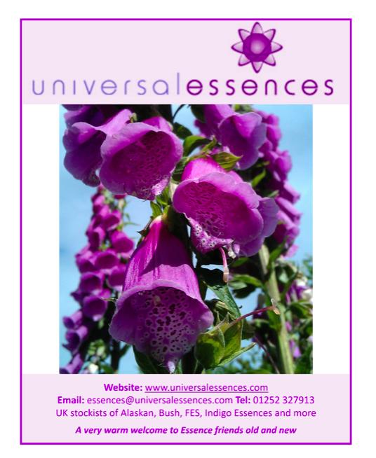 Image By Alaskan Essences On Alaskan Essences In 2020 Flower Essences Flowers Essence