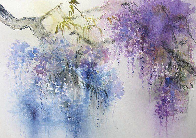 Glycines Aquarelle Glycine Wisteria Peinture Art Fine Art Print
