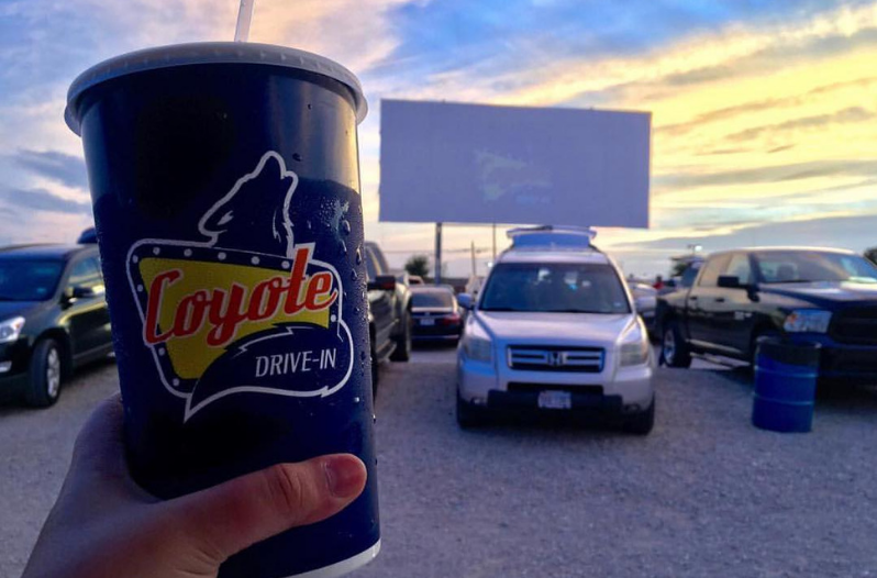 The 30 Best DriveIn Movie Theaters in the Country in 2020