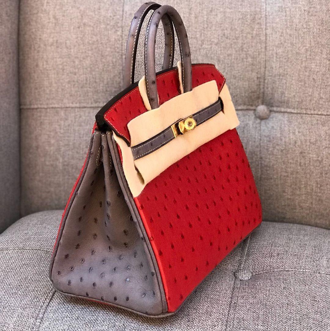 Hermès Birkin 25 Special Order Ostrich Rouge Vif and Ashplat ... d179ba5510f15