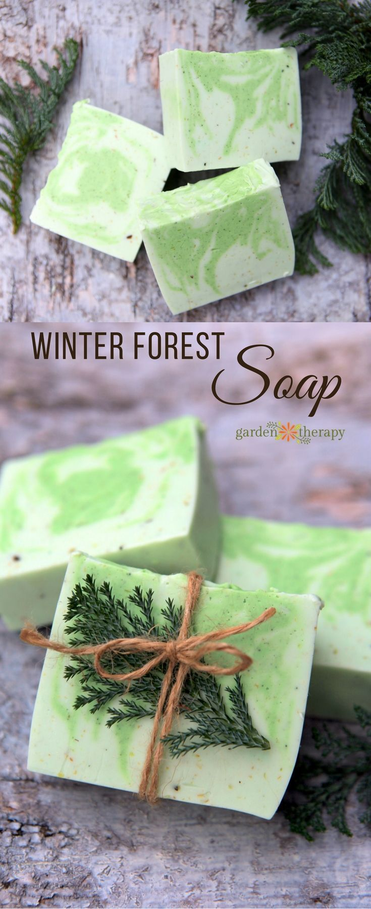 Fresh and Woodsy Winter Forest Soap Recipe | Essentials, Oil and ...