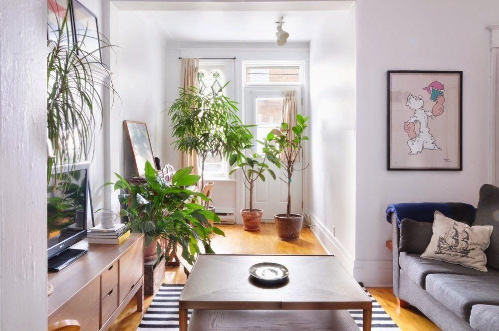Moldura cl sica y l mpara moderna decoraci n casas for Casa clasica moderna interiores
