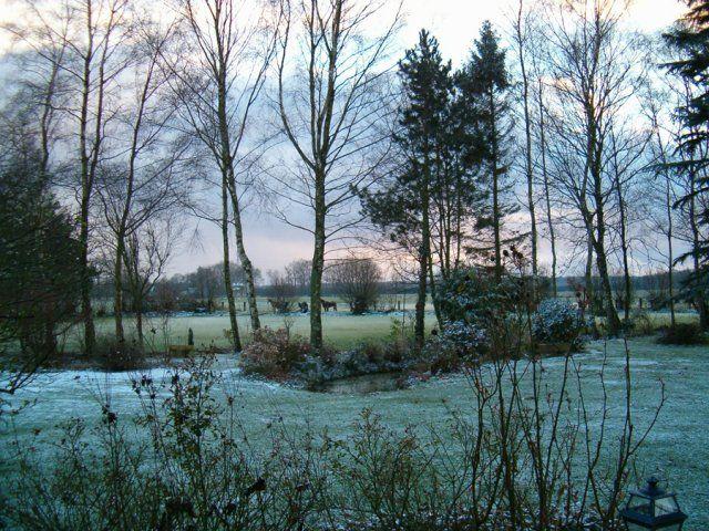 La Muette - Jardin