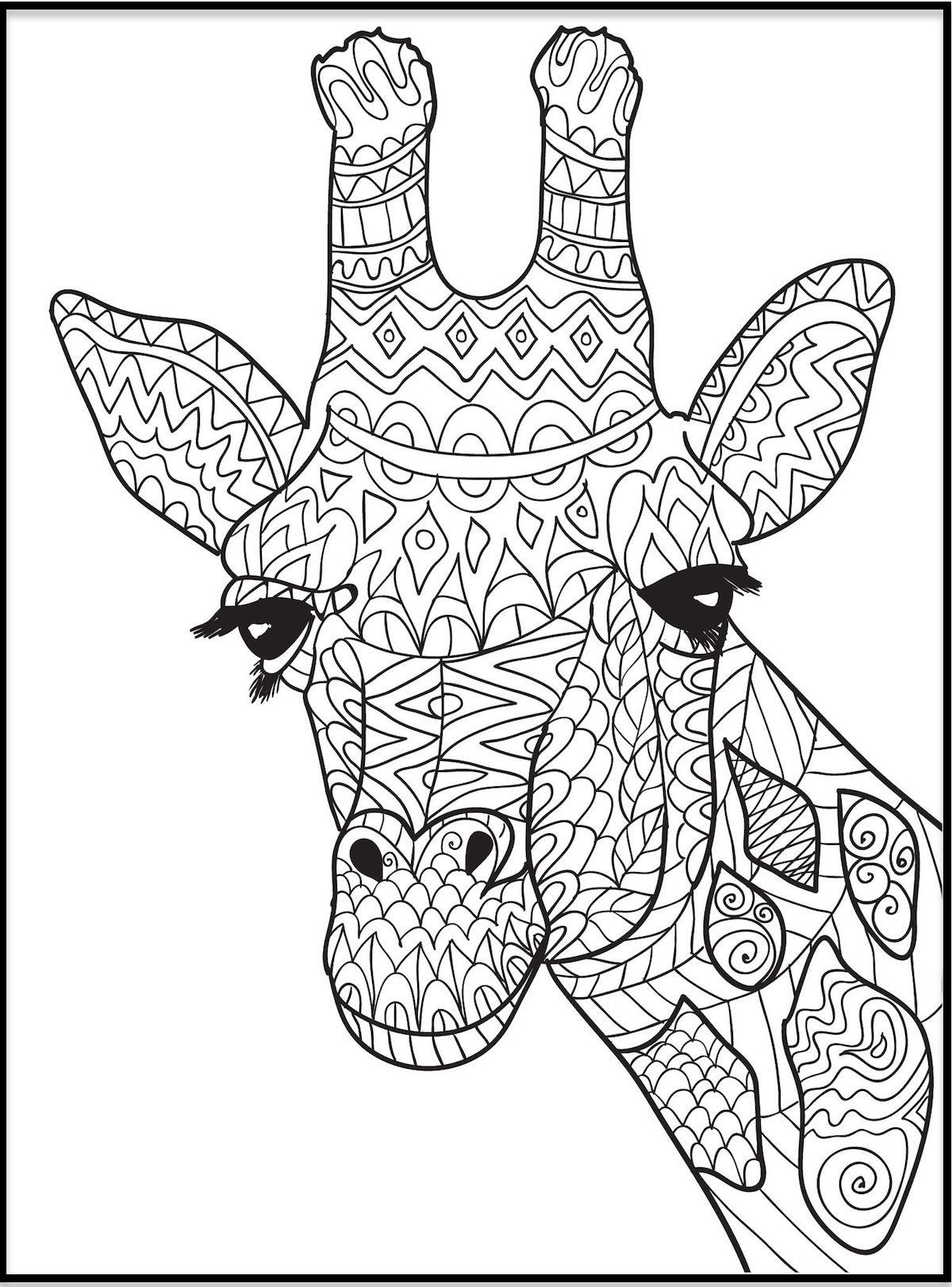 Art Coloring Pages For Kids Coloring Pages Giraffe Clipart Coloring And Other Free Giraffe Coloring Pages Animal Coloring Pages Giraffe Colors