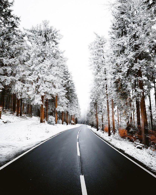 Winter . #christmas #christmastree #christmastree #christmastime #christmastime #christmasiscoming #christmaso... #christmas #newyears2020 #newyear #newyear2020 #seasonsoftheyear