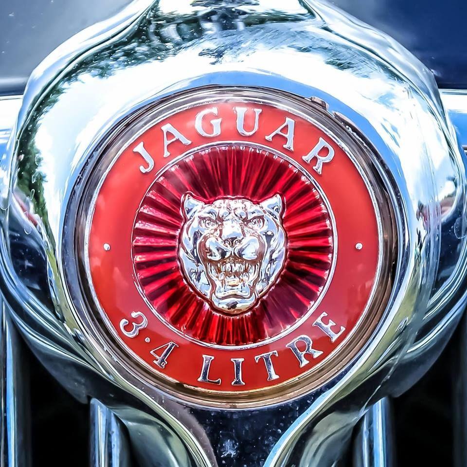 Logotipo Logo Jaguar Automotive Hood Orniments Pinterest