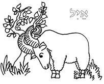 Coloring Pages Ram Bing Images Coloring Pages Coloring Pages For Kids Bible Crafts For Kids
