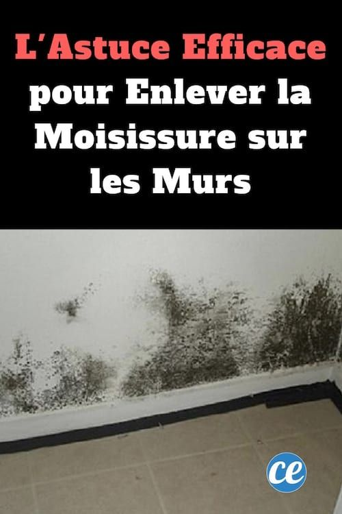 l 39 astuce efficace pour enlever la moisissure sur les murs secret de grand mere pinterest. Black Bedroom Furniture Sets. Home Design Ideas