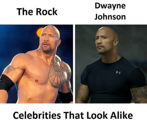 16 The Rock Memes That Ll Dwayne All Over Your Parade With