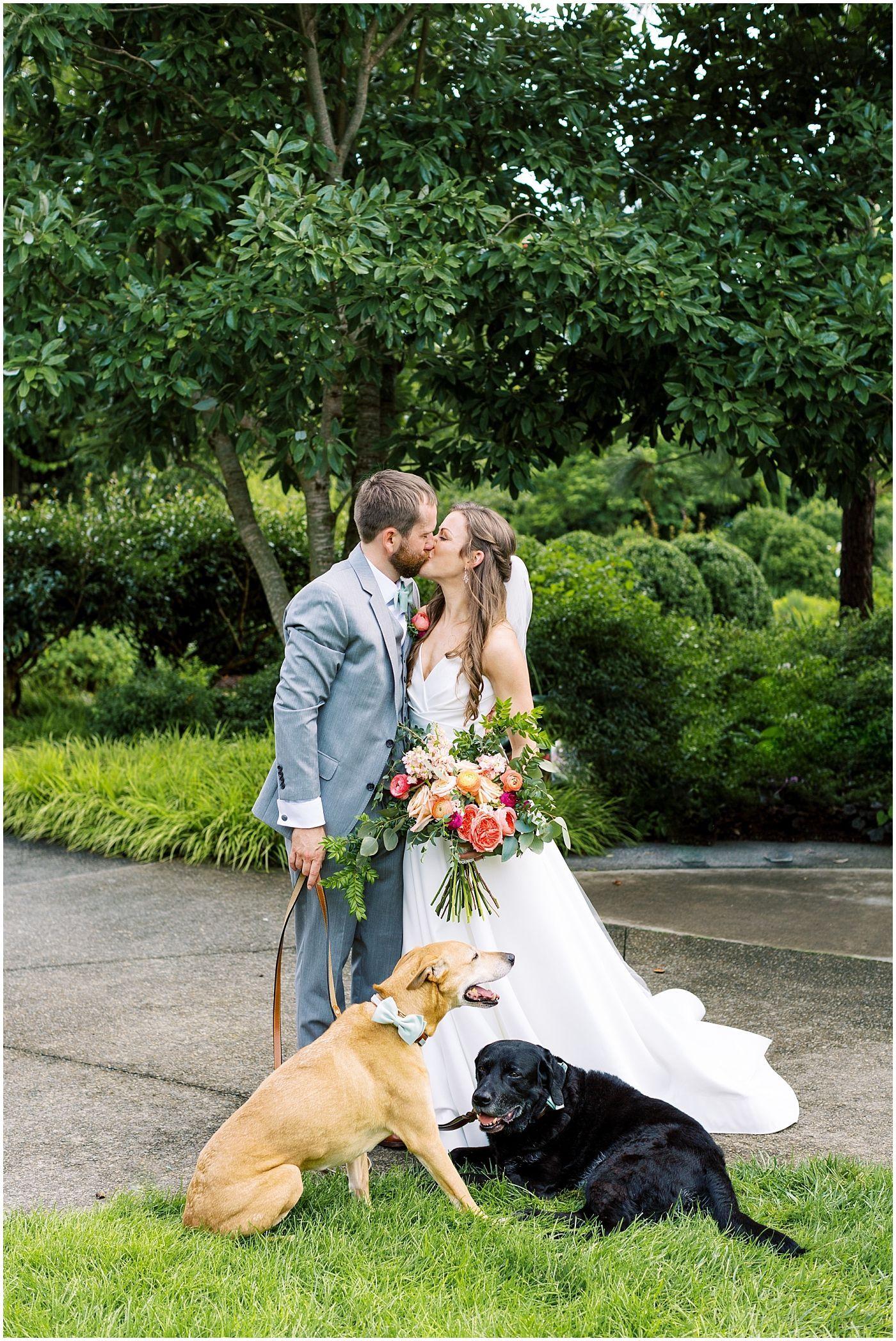 Asheville Dog Halloween 2020 JESSICA + BLAKE    THE NORTH CAROLINA ARBORETUM WEDDING