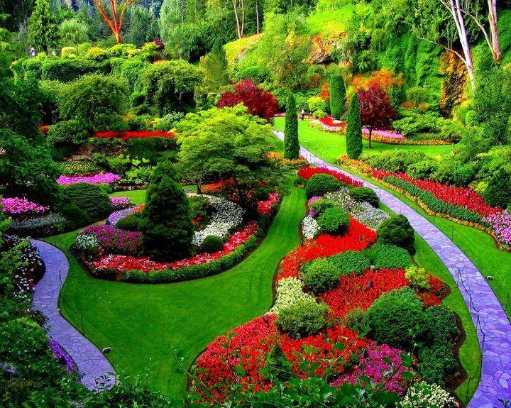 un beau jardin fleuri 88 | PLANTES | Pinterest | Garden gate, Fences ...