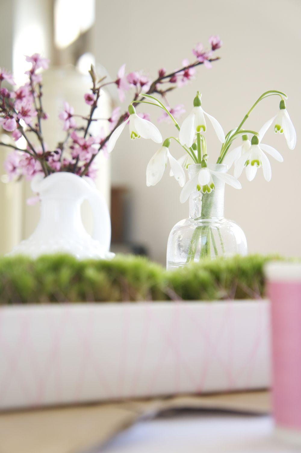 Laetitia Mayor Flor Sie Miniature Japanese Garden DIY