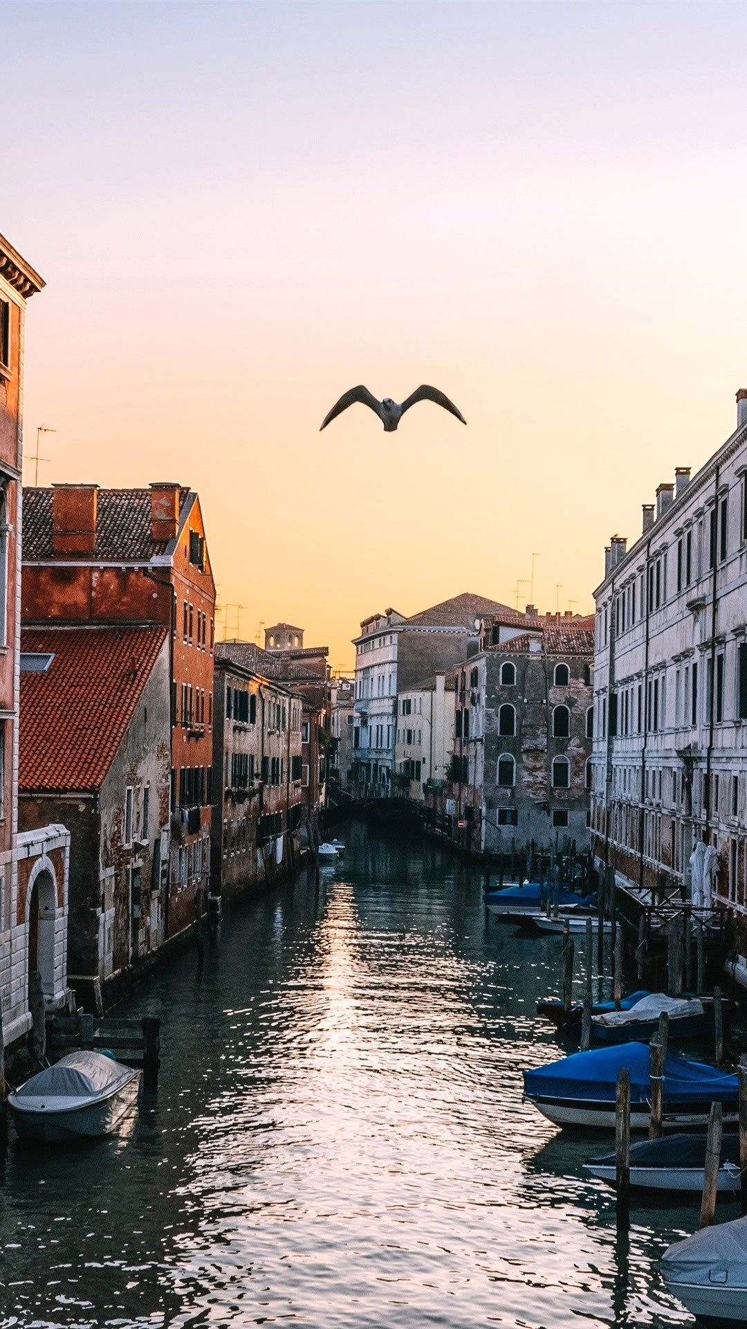 Venice Wallpaper 4k Iphone Ideas Check More At Https Manyaseema